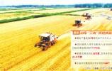 书写农业强农村美农民富的亮丽答卷