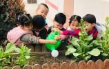 """呵護綠色 擁抱春天 ---濟南市天橋區行知幼兒園""""植樹節""""主題活動"""