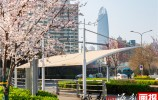 济南市全面打响城市品质提升百日攻坚战