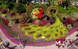 央视《新闻联播》| 济南613万株花卉扮靓城市街头 营造浓厚节日氛围
