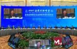 视频 | 亚信金融暨亚信金融智库国际圆桌会举行 陈元出席