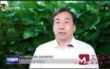 《山东新闻联播》济南:乘势而上 创新发展 建设现代化强省会
