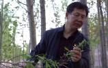 榜样 | 闫家河:当好森林医生 守护生态安全