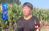 问政   村民需要惠农服务 供销社能否帮助解决?