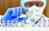 世界首个新冠DNA疫苗或将于本月在印度使用,无需针头注射