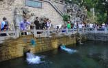 最美泉水季!濟南推出12條泉水游線路