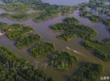济西国家湿地 从空中看是啥样