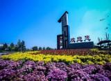 土地流转率超7成 济南平阴孝直镇率先实现全域规模经营 为乡村振兴提供孝直模式