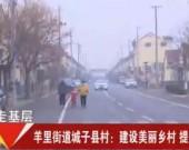 【新春走基层】羊里街道城子县村:建设美丽乡村 提高幸福指数