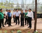市人大常委会副主任巩宪群带队到莱芜区调研乡村振兴和种业发展有关情况