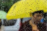 降雨解渴趵突泉水位抬升 今年以来累计降水比常年同期多七成