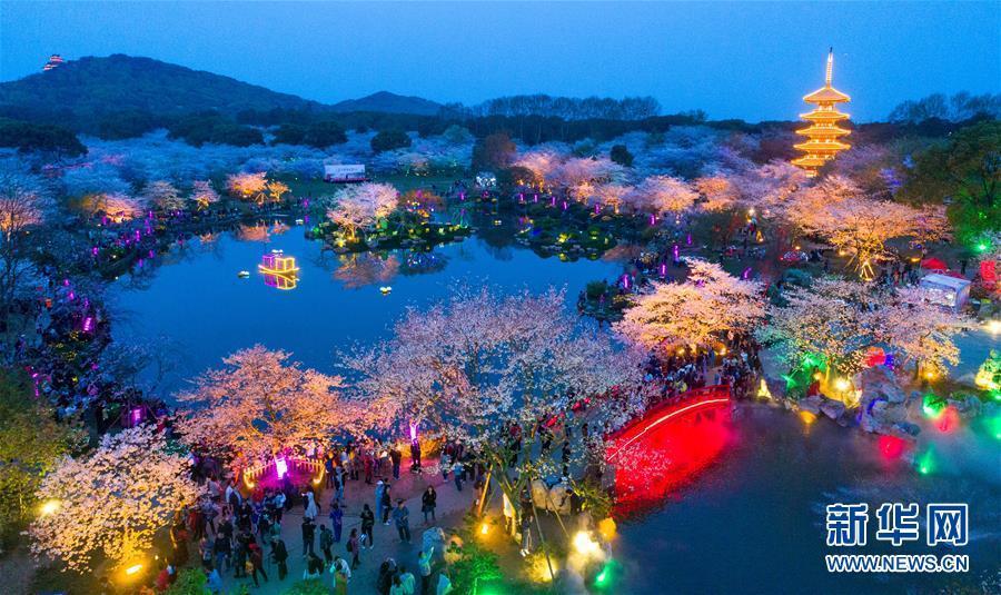 (春季美丽生态)(2)武汉:樱花缤纷醉游人
