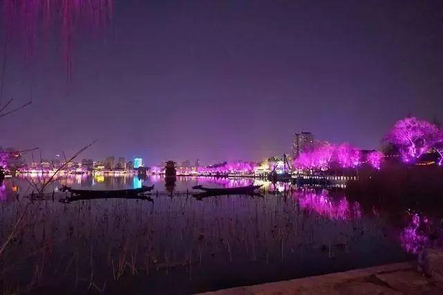 让我带您在济南的夜里走走,我猜您从未见过这样的TA~ - 舜网 - cb30488e243749c2ae77e4b91fed9699.jpeg