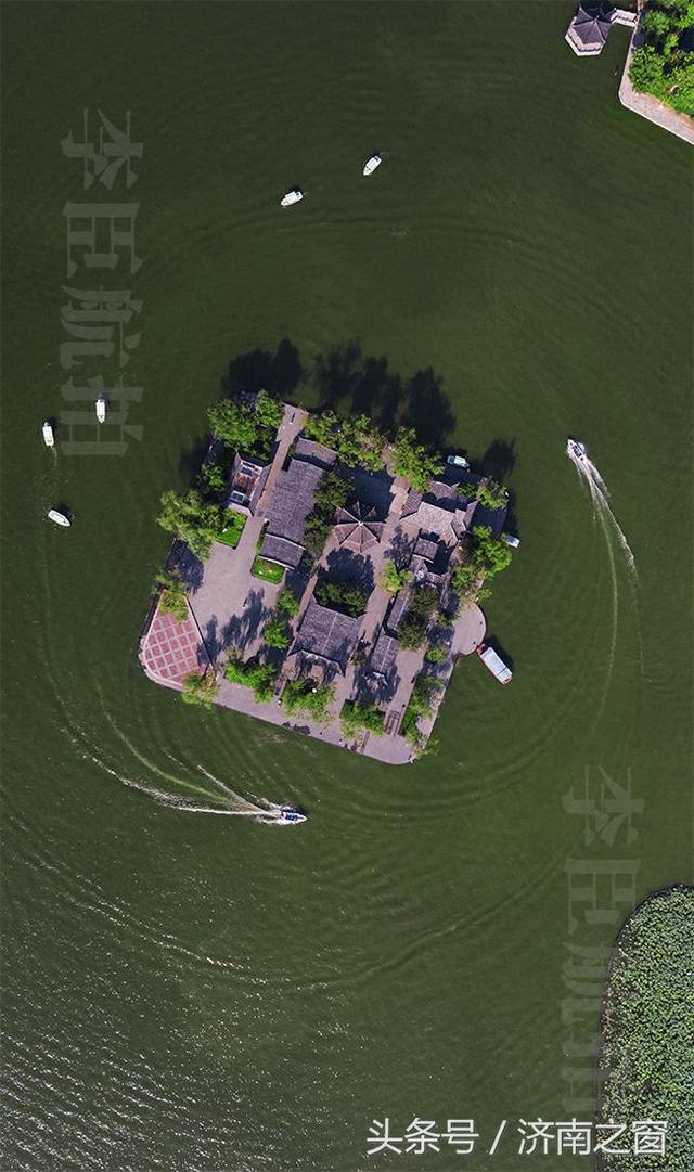 无人机飞跃历下亭 湖水荡漾百鸽争流