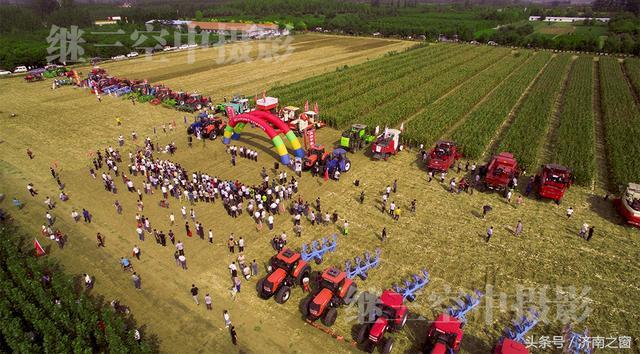"""无人机空中见证 """"济南造""""农机 完成玉米全程机械化过程"""