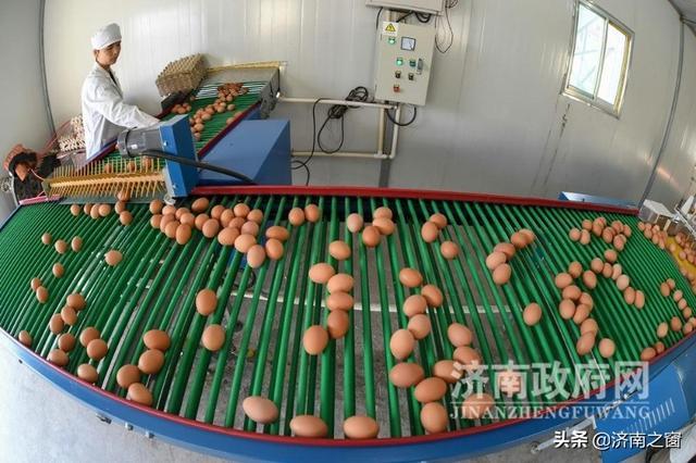 《济南人物》山东省劳动模范 刘立民