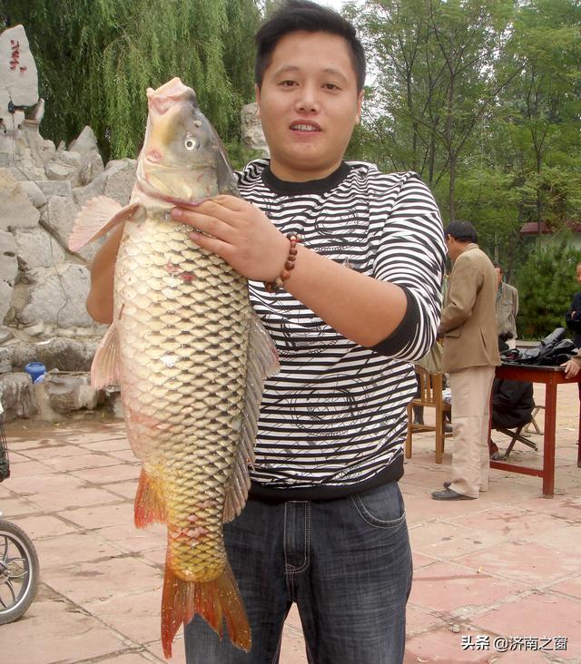 《山东人物》济南仙乐园有机蔬菜有限公司总经理 张明伟