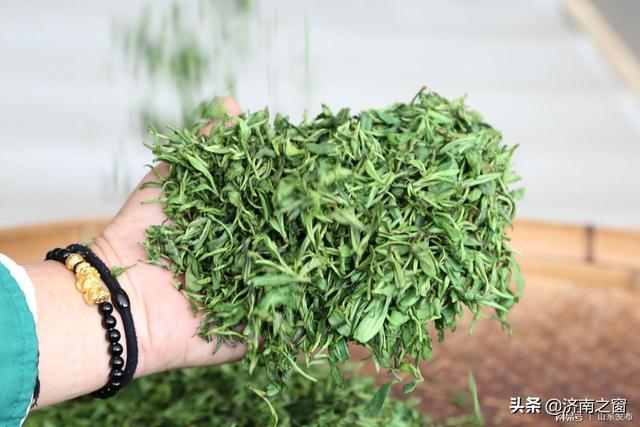 中國緯度最高的第一鍋泉城綠茶 今天在長清南湖玉露出鍋