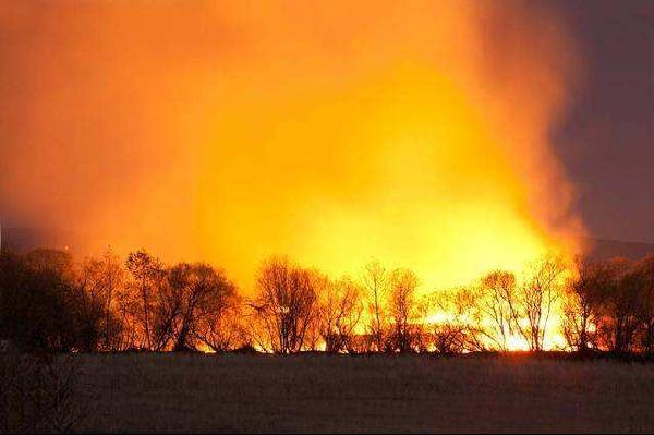 春季森林防火进入关键期 防火工作刻不容缓