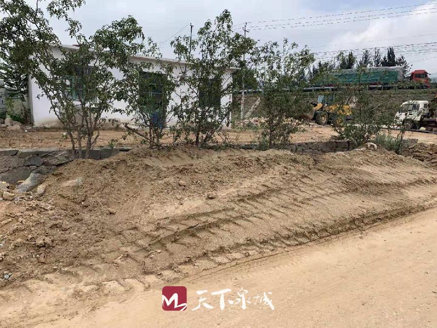 最新 | 济南长清发现的元代墓葬暂不进行抢救性考古发掘