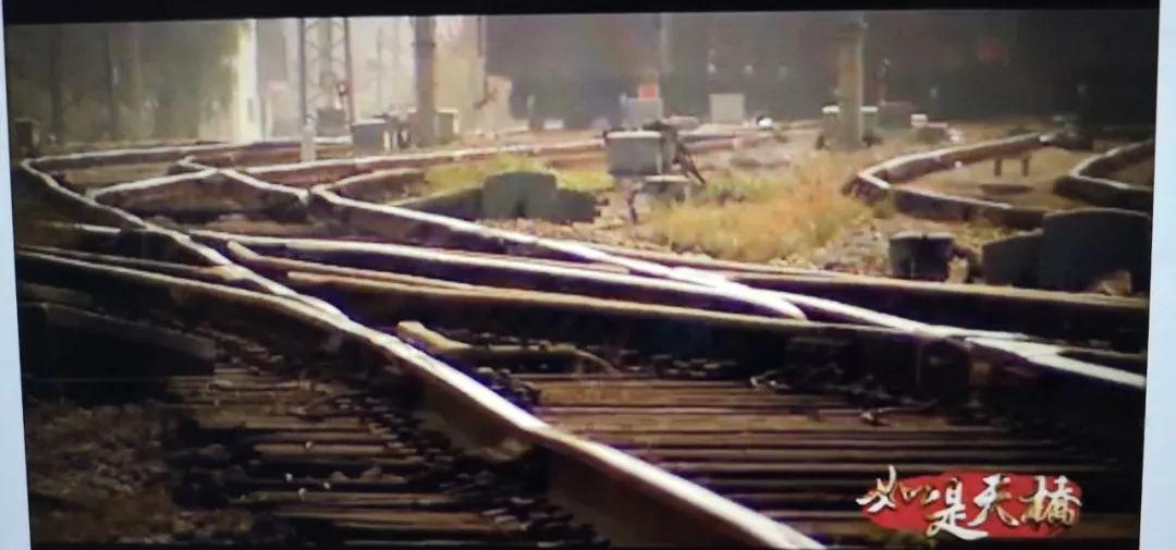 视频|如是天桥(三)