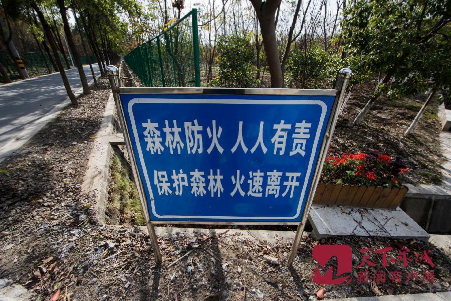 摄图网_500739310_banner