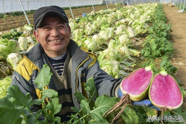 山东济南 有位连夺全国5枚金牌的草莓状元