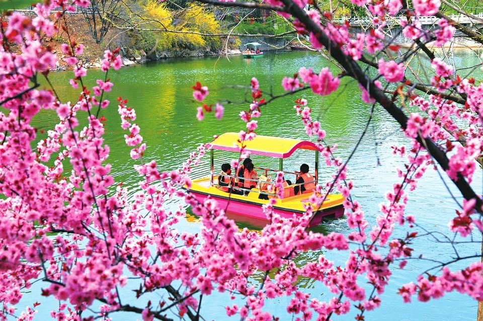 春光无限 乐享清明