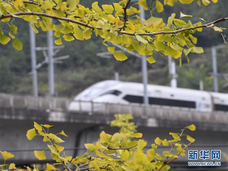 #(图文互动)(3)全国铁路10月11日起实施新的列车运行图