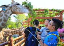 捐出一本书,表达一份爱  --乐虎国际手机版野生动物世界爱心图书捐赠活动正式启动