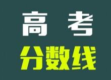 2019山东高考分数线公布:本科文503 理443