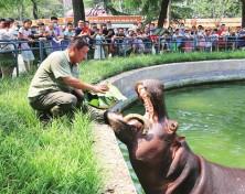 动物园里的端午节