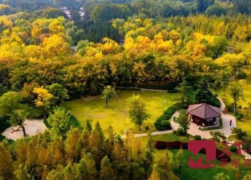2021年底,濟南將新建411個公園100處花漾街區