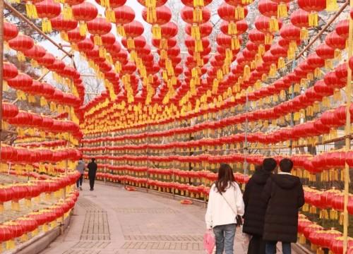 萊蕪的大街又紅了,年味兒從掛燈籠開始!