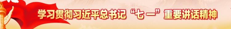 """学习贯彻习近平总书记""""七一""""重要讲话精神"""