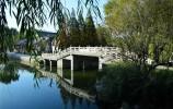 【走遍济南】人在桥上,桥在柳中,秋天来大明湖赏诗意画卷