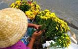 往事 | 济南府松菊花园的鲜花曾远销日本