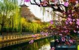 12个月12首诗, 回首泉城济南,与您相逢在每一首诗里!