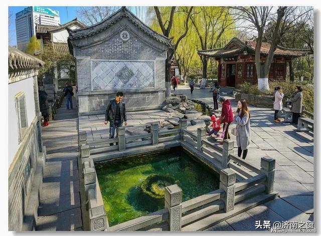 「山东人物」李华文和他的《泉韵济南 · 趵突泉群》
